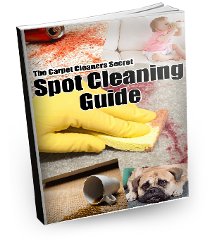 Spot and stain removal guide
